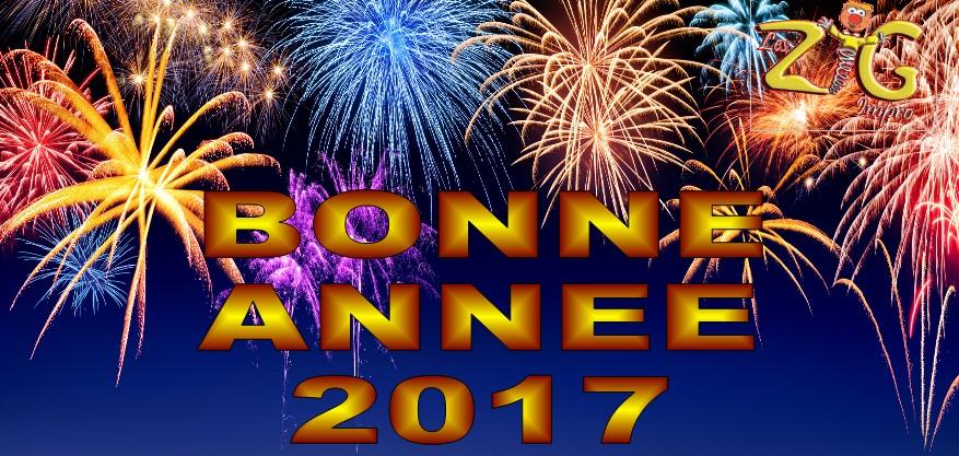 2017-BONNE-ANNEE